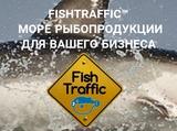 FishTraffic™ DalKomTrade&Co Ltd.