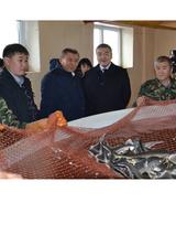 Вячеслав Эрдниев